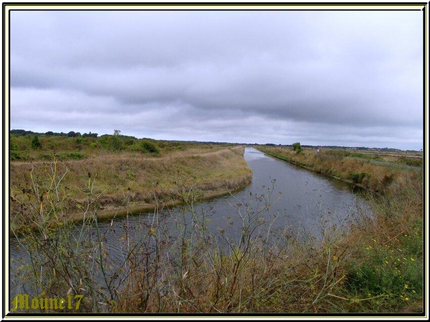 Balade dans les marais oléronais ce dimanche