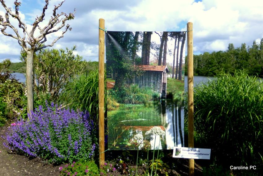 expo photos à la promenade fleurie de mimizan - caroline pc40