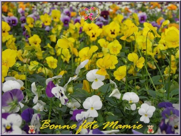 Bonne fête à toutes les Grand-mères