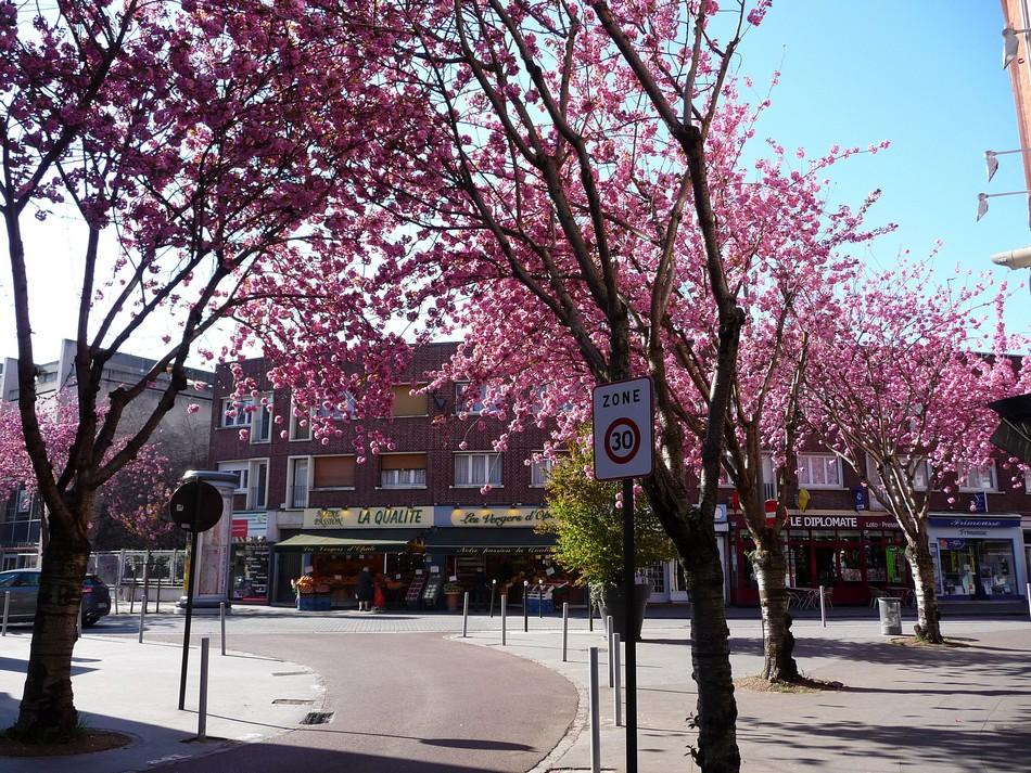 Amiens revit, nous sommes en avril.