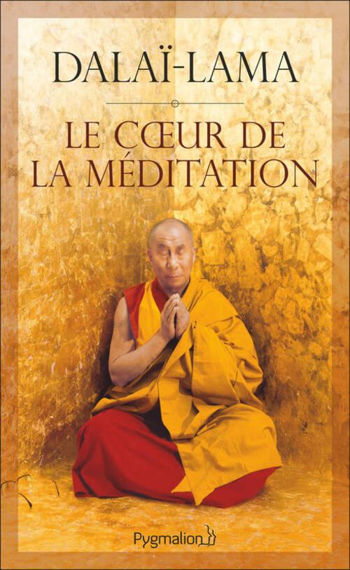"""""""Le coeur de la méditation"""" des passages intéressants mais non accessible aux profanes"""