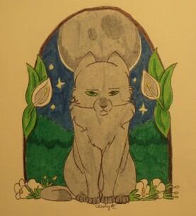 Chat gris pour Jolie Lune