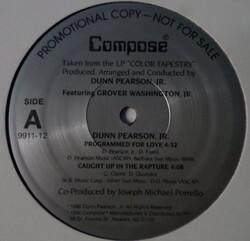 Dunn Person Jr & Grover Washington Jr - Programmed For Love