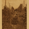 67	Hop pickers (Puget Sound)