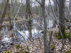 Le Plan Paysage et Biodiversité de la Plaine de Jouars (suite 1)