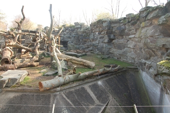 zoo cologne d50 2012 021
