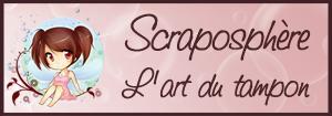 SCRAPO tampon1