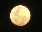 Les méfaits de la pleine lune  まんげつ