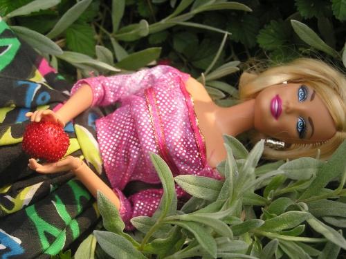 Vive les fraises!!!!