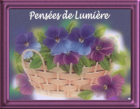 Pensées de Lumière - Toussaint : kdo pour vous