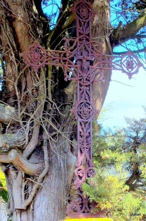 y23---Croix-et-arbre.JPG