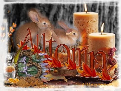 parfum d'automne?