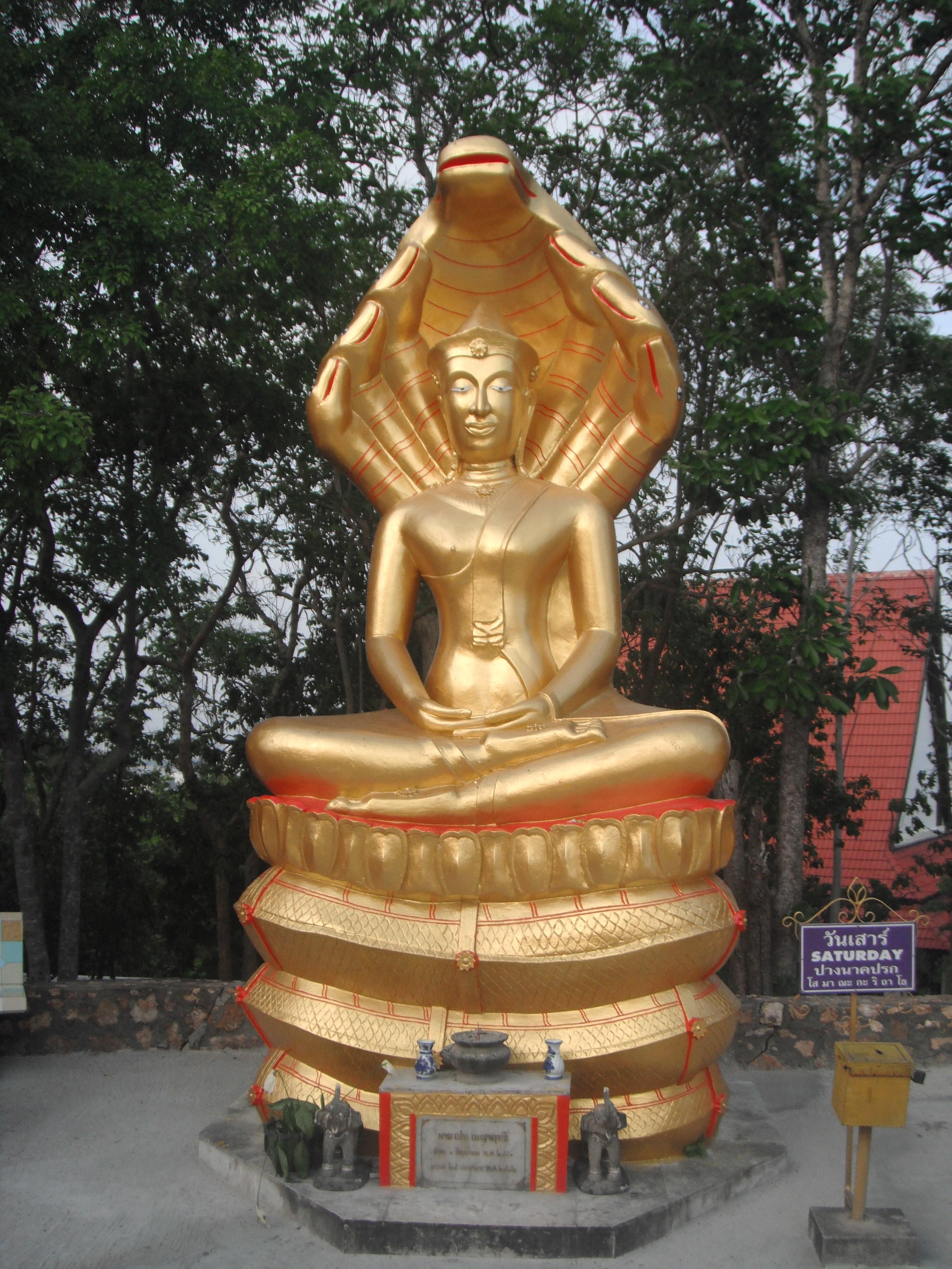Chaque jour son Bouddha...
