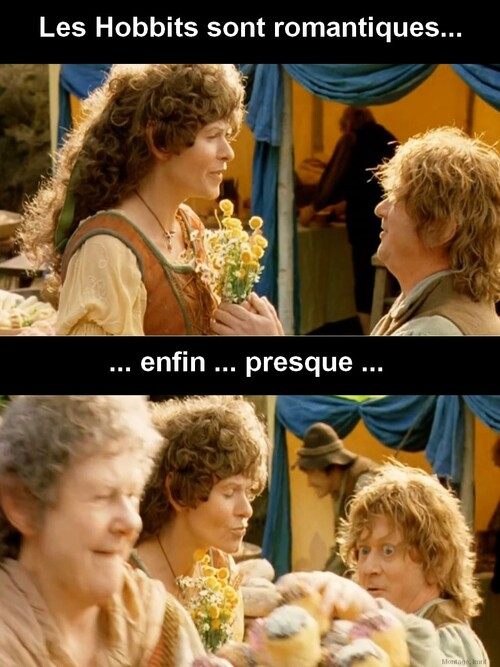 La Romance chez les Hobbits