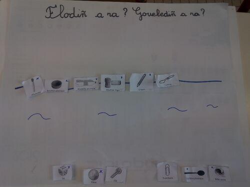 Sciences : flotte ou coule ?