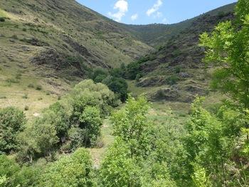Le vallon de la Cabra
