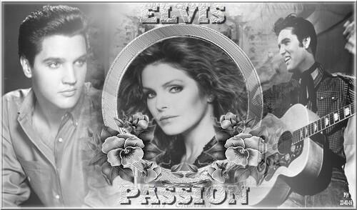 Elvis 012