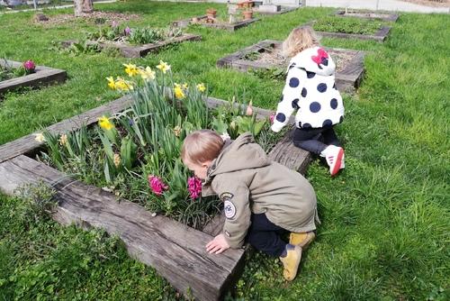 MARS : le printemps s'est bien installé dans notre jardinet !