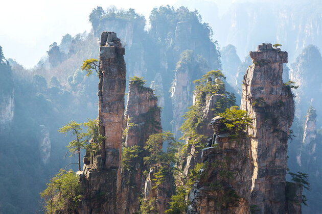 La forêt suspendue de Zhangjiajie en Chine