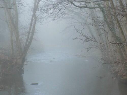 Balade dans la brume