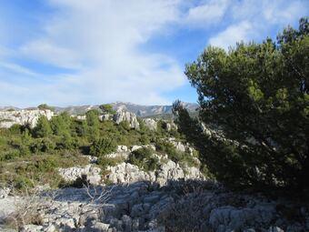 Nord-est: Roqueforcade et le pic de Bertagne