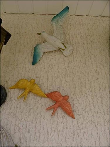 oiseaux-entree.jpg