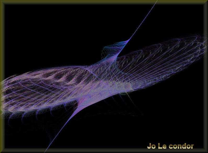 Pour terminer la journée.... Le vol du condor vers les étoiles...En fractales