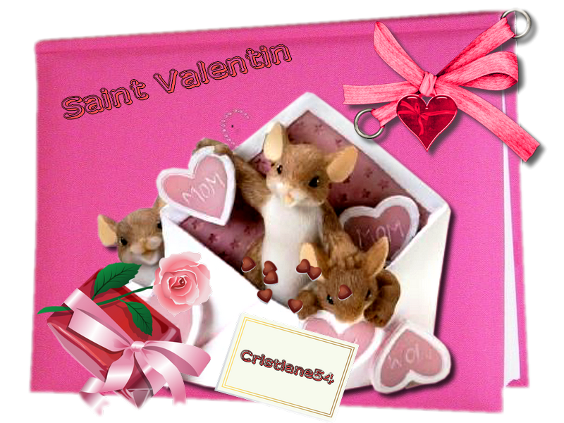 C'est l'amour Saint Valentin !