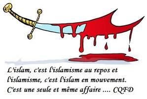 Stéphane  Ravier - CONTRE LE VOILE INTEGRAL ET l'ISLAMISME !