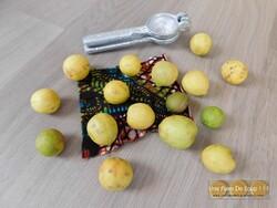 Petits moelleux au citron