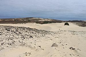 désert de viana4
