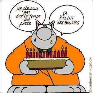 Le_chat_gateau_anniversaire