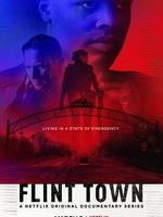Flint Town : Pendant deux ans, ils ont accompagné les flics de Flint, dans le Michigan, révélant une police dans des conditions intenables, aux prises avec des problèmes explosifs. ... ----- ...   Créée par 2018 sur Netflix Nationalité Américaine Genre Documentaire