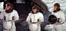 Les Evadés de la planète des singes