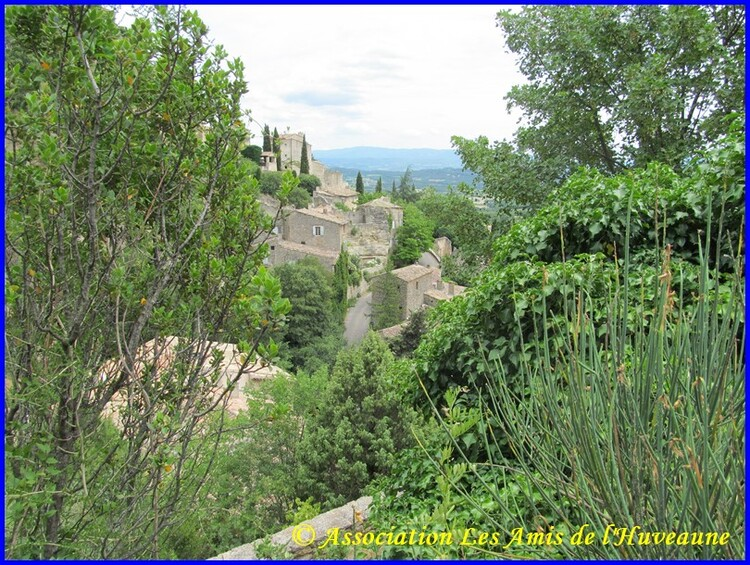 Luberon, L'abbaye de Senanque