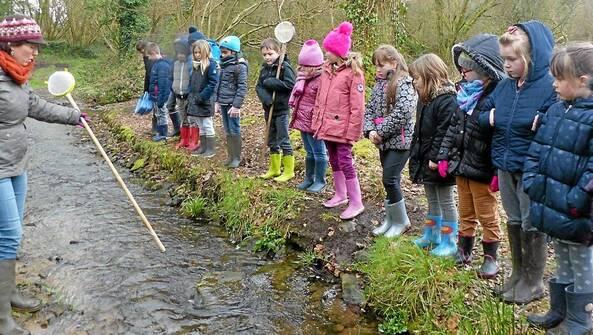 Les écoliers de Saint-Jean-Baptiste, accompagnés de Céline Robert, ont découvert le milieu aquatique, dans le ruisseau situé à proximité de l'école, lundi.