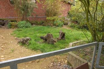 Zoo Osnabruck d50 2012 192
