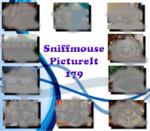 PictureIt 179 - Sniffmouse