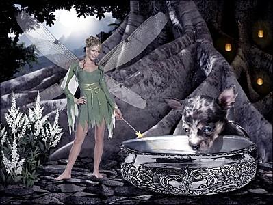 Elfes animé - Reglet - Glitter - Scintillant