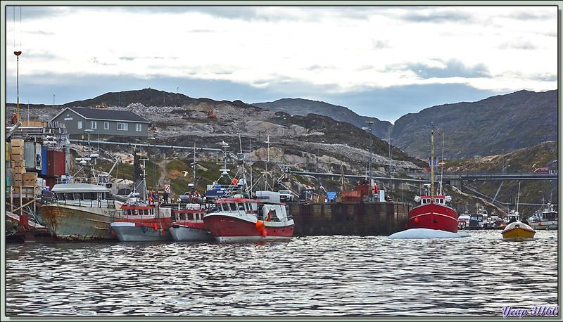 Après la belle mais trop rapide balade (impératifs dus à la brume matinale), retour au port d'Ilulissat - Baie de Disko - Groenland