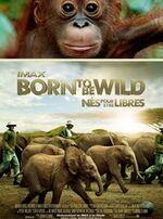Filmographie - Nature