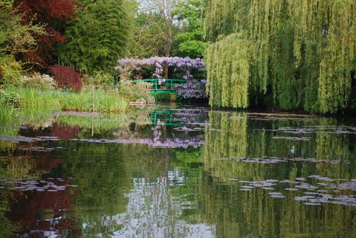 Les nymphéas : Claude Monet