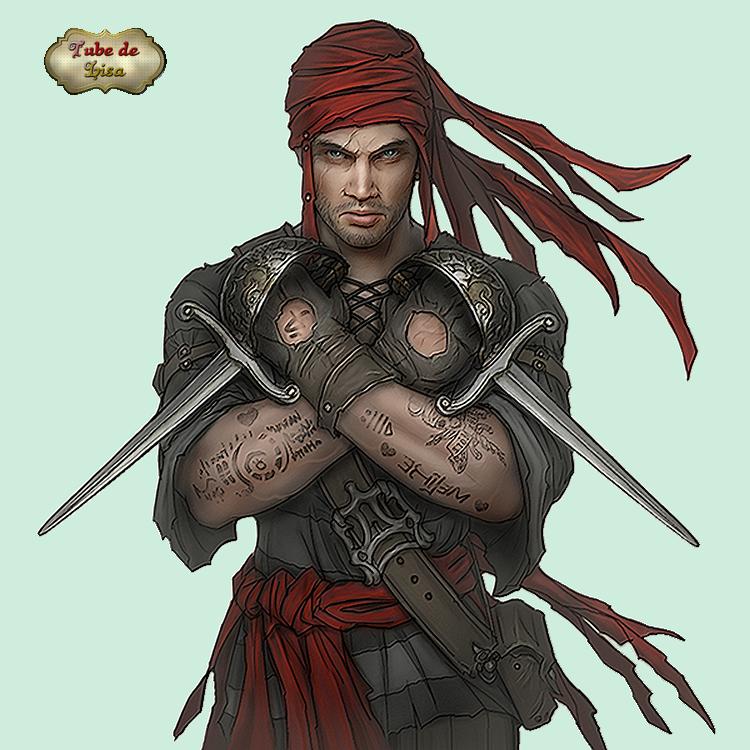 Pirates série 20