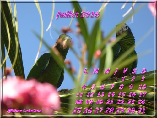 Calendrier de Juillet 2016