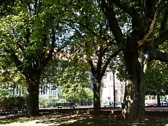 Metz ville verte - mp1357 26 01 2011 24
