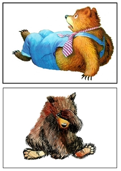 Que se passe-t-il chez les ours ?