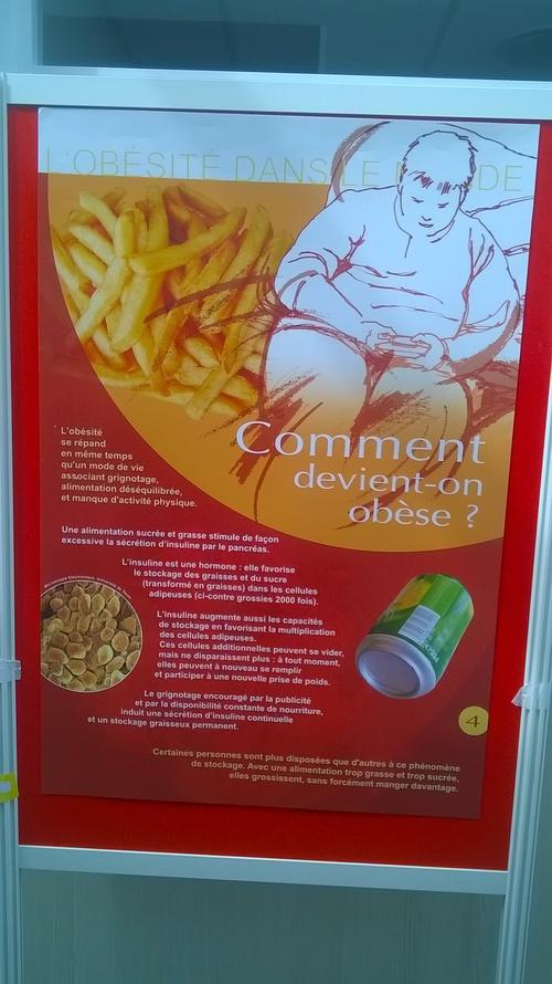 Exposition Obésité