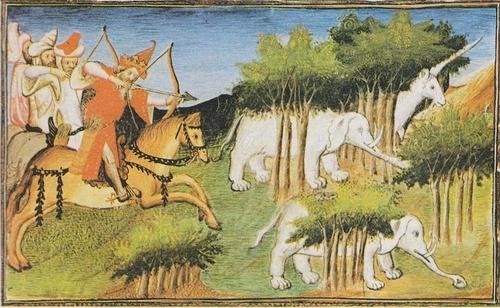 Les éléphants du roi (Tolstoï)