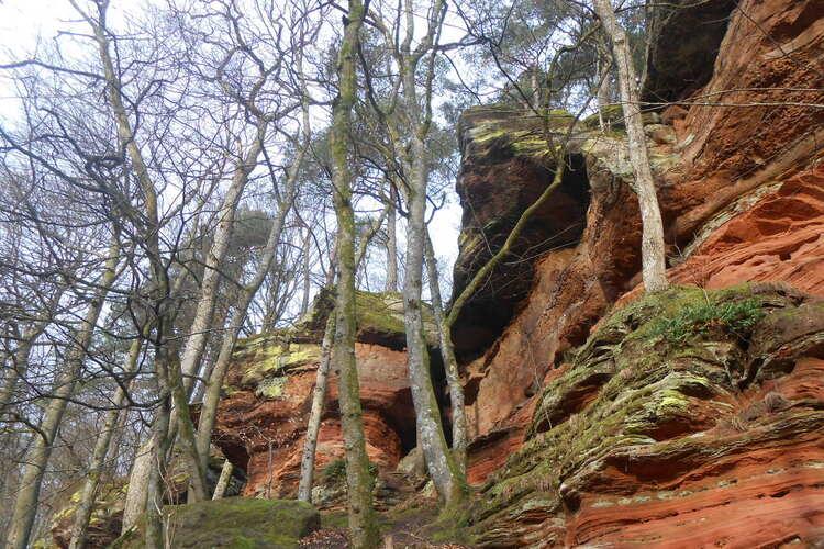 Vosges du nord-le pays des rochers fantastiques #2