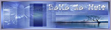 PSP: Belledenuit